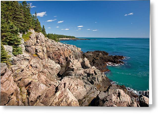 New England Wilderness Greeting Cards - Cutler Cliffs 1 Greeting Card by Susan Cole Kelly