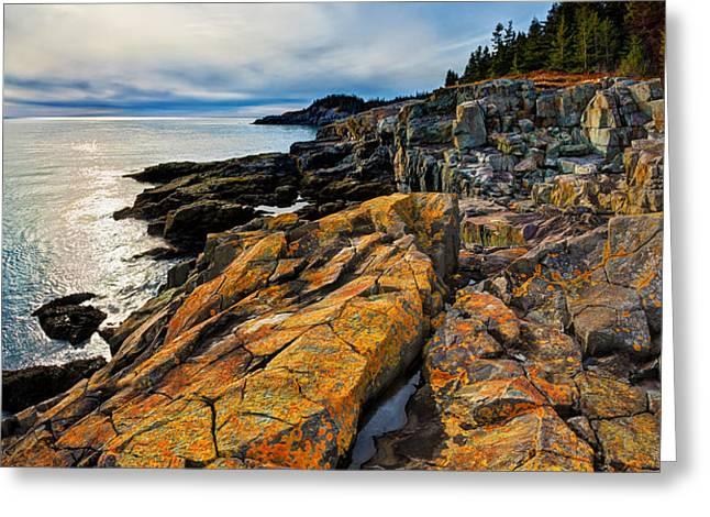 Cutler Coast Lichen Greeting Card by Bill Caldwell -        ABeautifulSky Photography