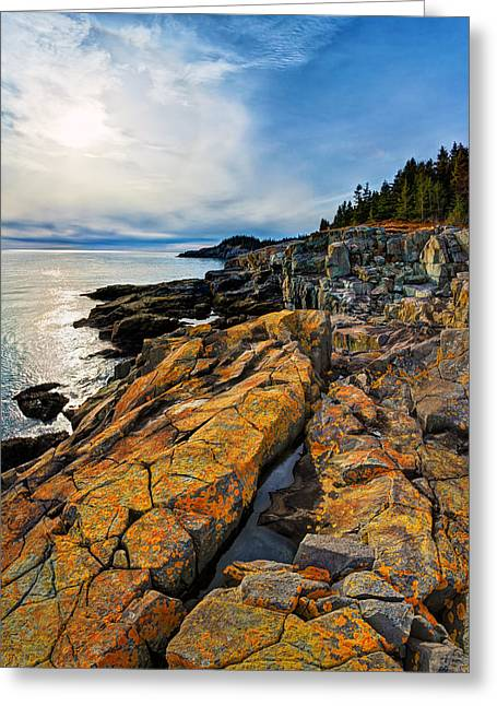 Ocean Art Photography Greeting Cards - Cutler Coast Lichen Greeting Card by Bill Caldwell -        ABeautifulSky Photography