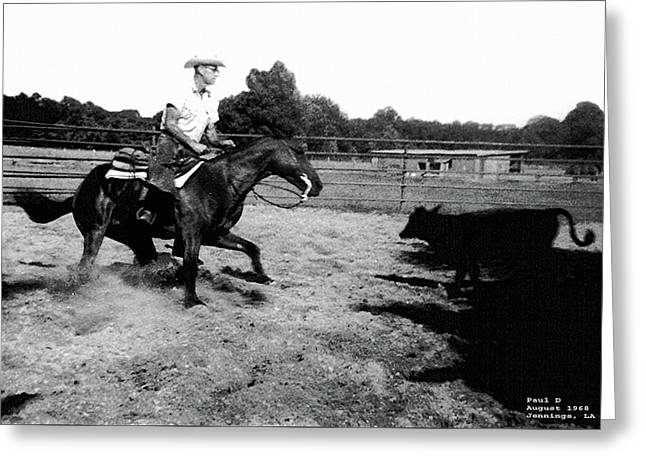 Cutting  Horse  1968 Greeting Card by Carl Deaville