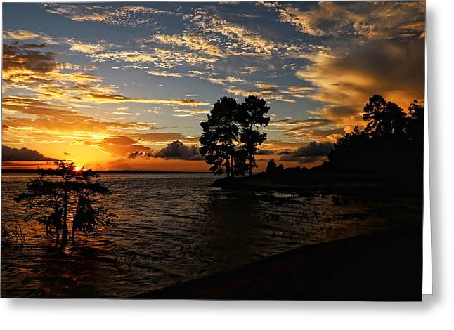 Cypress Bend Resort Sunset Greeting Card by Judy Vincent