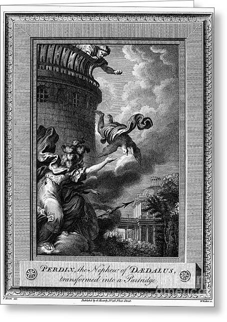 Temple Of Athena Greeting Cards - Daedalus And Perdix Greeting Card by Granger