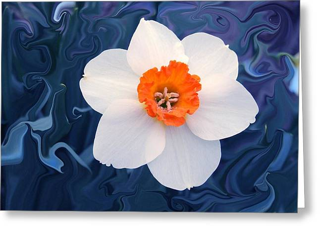 Daffodill In Blue Greeting Card by Jim  Darnall
