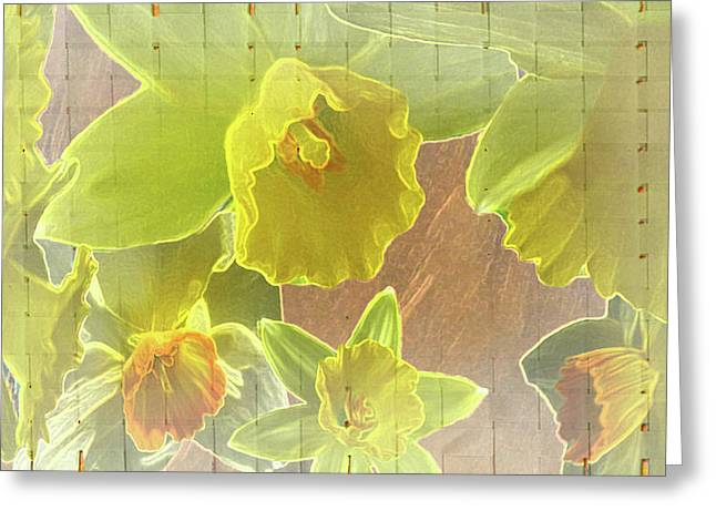 Lively Floral Design Greeting Cards - Daffy Daffodils Greeting Card by Debra     Vatalaro