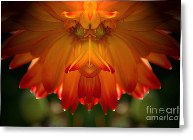 Botanical Greeting Cards - Dahlia Abstract 1 Greeting Card by Elmar Langle