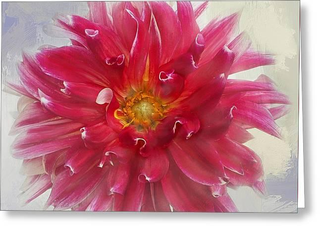 Photographs With Red. Greeting Cards - Dahlia Regalia Greeting Card by Denise Saldana