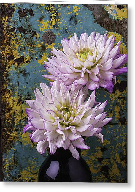 Purple Flora Greeting Cards - Dahlias Against Rusty Wall Greeting Card by Garry Gay