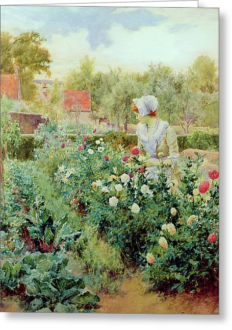 Picking Flowers Greeting Cards - Dahlias Greeting Card by Alfred Glendening