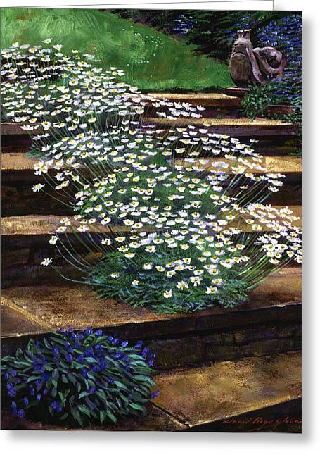 Garden Statuary Greeting Cards - Dainty Daisies Greeting Card by David Lloyd Glover
