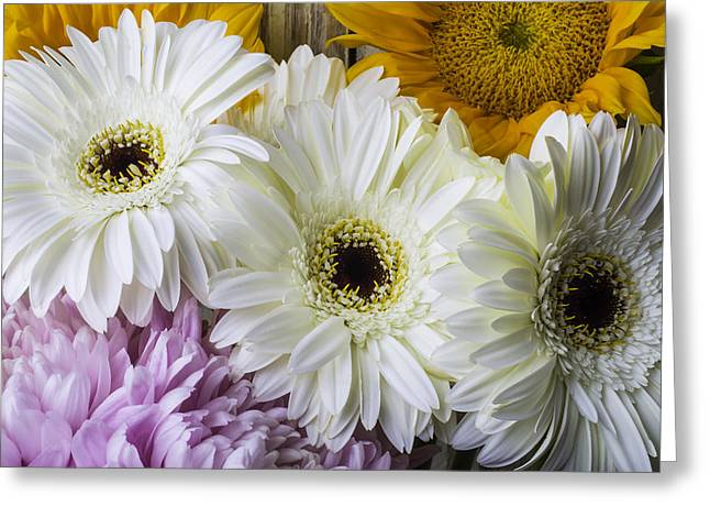 Daises And Sunflowers Greeting Card by Garry Gay