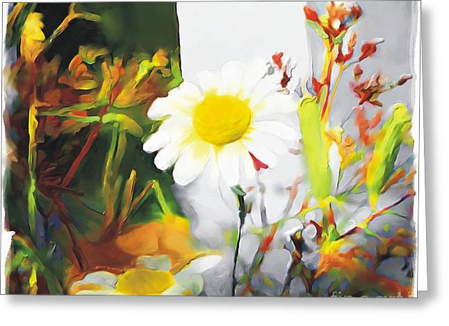 Floral Still Life Greeting Cards - Daisies Greeting Card by Bob Salo