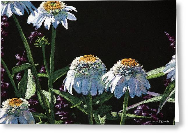 Daisies Greeting Card by Christopher Reid
