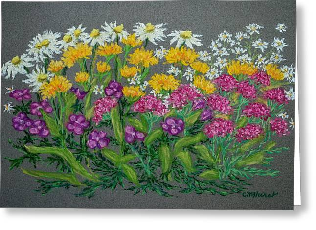Daisies Pastels Greeting Cards - Daisies Greeting Card by Collette Hurst