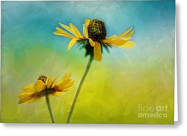 Judi Bagwell Greeting Cards - Dancing in the Sun Greeting Card by Judi Bagwell