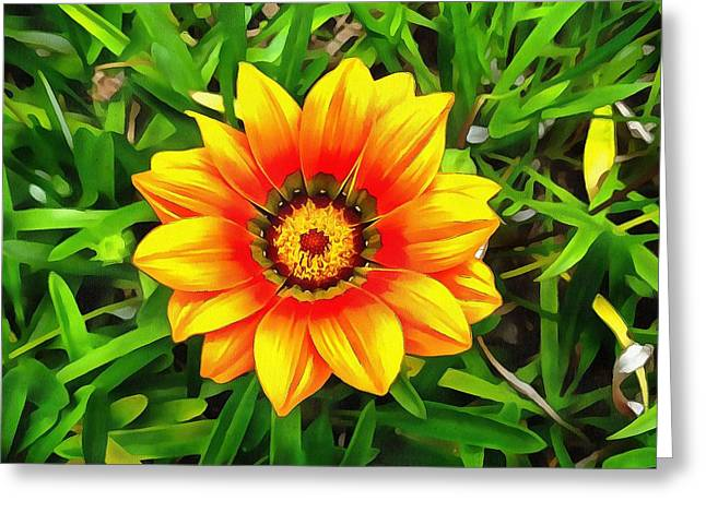 Debbie Chamberlin Greeting Cards - Daisy May Greeting Card by Debbie Chamberlin