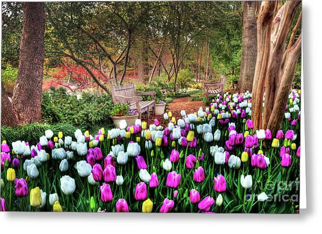 Dallas Arboretum Greeting Card by Tamyra Ayles