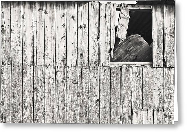 Shed Photographs Greeting Cards - Damaged hut Greeting Card by Tom Gowanlock