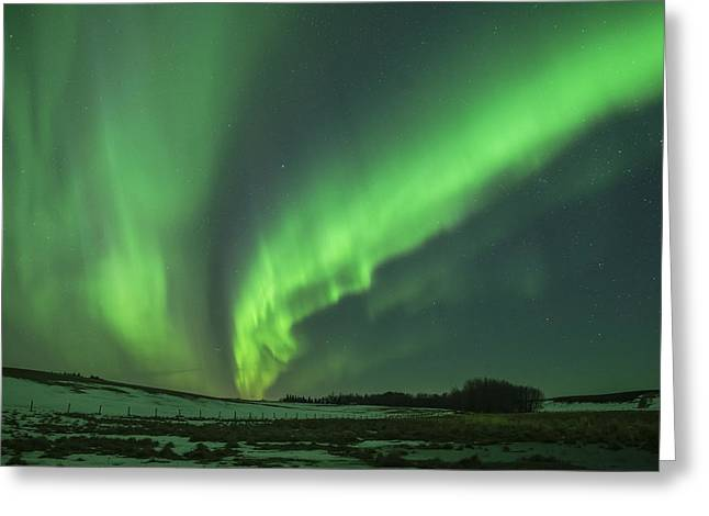 Edmonton Photographer Greeting Cards - Dance Greeting Card by Mike Isaak