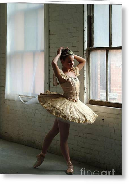 Windowlights Greeting Cards - Dancer By Windowlight Greeting Card by Georgia Sheron
