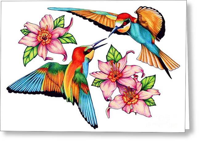 Colour Pencil Greeting Cards - Dancing Hummingbirds Greeting Card by Sheryl Unwin