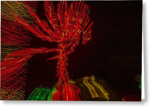 Observer Greeting Cards - Dancing Lights 6 - Palm Tree Greeting Card by Penny Lisowski