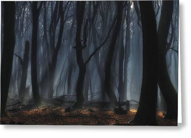 Fog Greeting Cards - Dancing Trees Greeting Card by Jan Paul Kraaij
