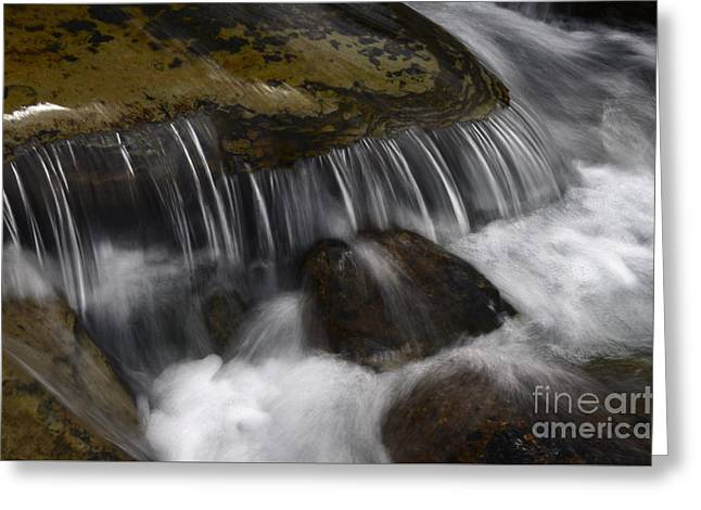 Clean Water Greeting Cards - Dancing Waters 2 Greeting Card by Bob Christopher