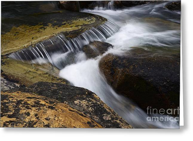 Clean Water Greeting Cards - Dancing Waters 6 Greeting Card by Bob Christopher