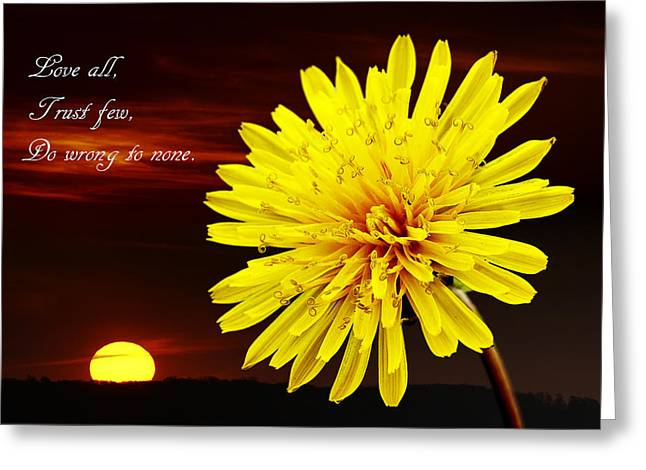 Moral Greeting Cards - Dandelion against Sunset with Inspirational Text Greeting Card by Donald  Erickson