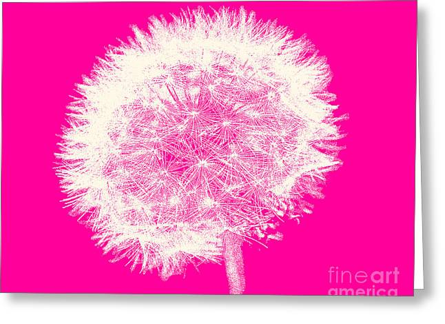 Teenage Art Greeting Cards - Dandelion in White and Pink Greeting Card by Emily Kay