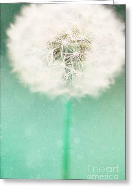 Dandelion Seed Greeting Card by Kim Fearheiley