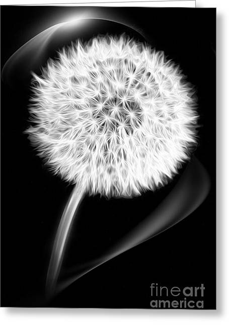 Filigree Greeting Cards - Dandelion Greeting Card by Viaina