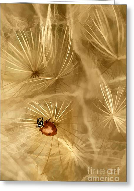 Dandelions Fairy Tales Iv Greeting Card by Iris Greenwell