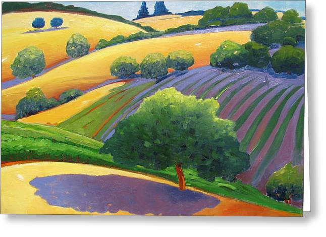 Rolling Hills Vinyards Greeting Cards - Danny Greeting Card by Gary Coleman