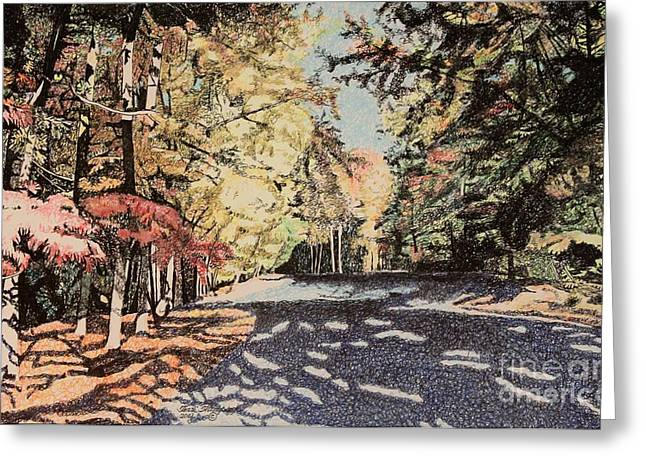 Dappled Light Drawings Greeting Cards - Dappled Light Greeting Card by Terri Thompson