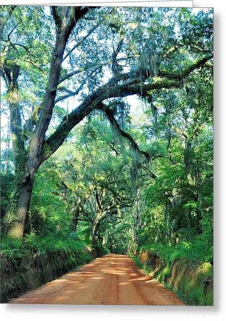 Thomasville Greeting Cards - Dapples Of Light Greeting Card by Jan Amiss Photography