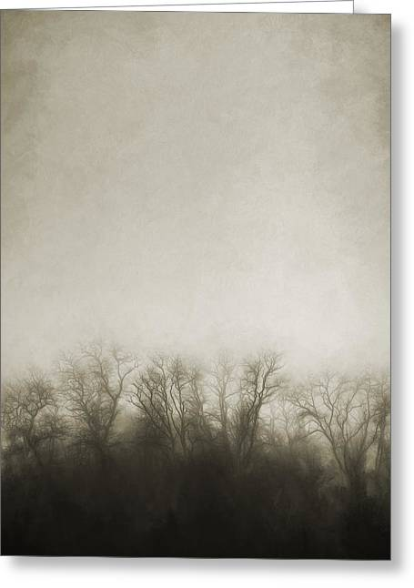 Eerie Greeting Cards - Dark Foggy Wood Greeting Card by Scott Norris