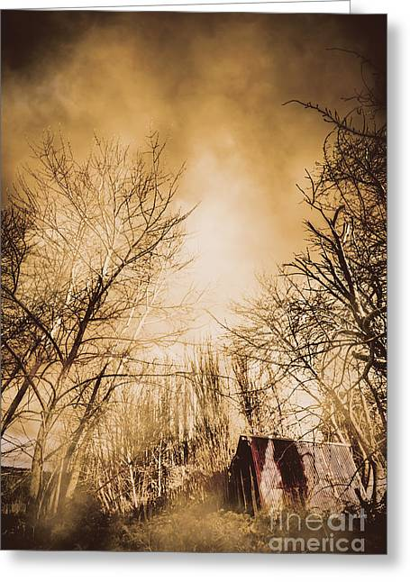 Dark Forest Hut Greeting Card by Jorgo Photography - Wall Art Gallery