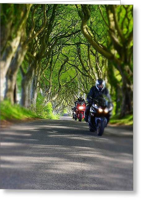 The Dark Hedges Greeting Cards - Dark Hedges Greeting Card by Mark Hinds