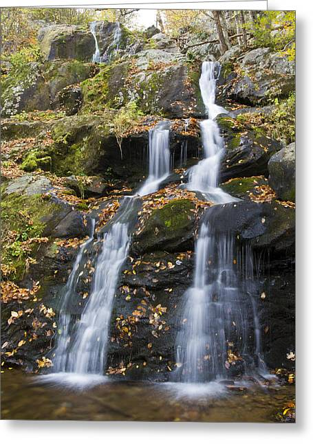 Shenandoah National Park Greeting Cards - Dark Hollow Falls Shenandoah National Park Greeting Card by Pierre Leclerc Photography
