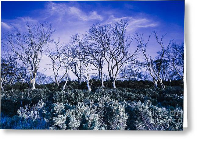 Dark Scene From Scary Dreams Greeting Card by Jorgo Photography - Wall Art Gallery