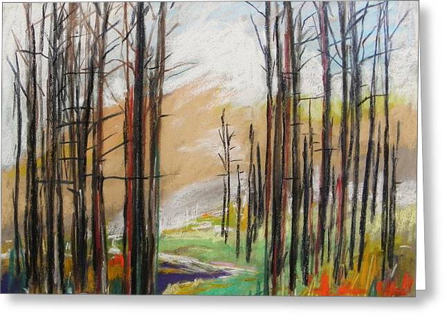 Dark Trees Before Light Greeting Card by John Williams