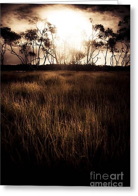 Eerie Greeting Cards - Dark Wetland Sunset Scene Greeting Card by Ryan Jorgensen