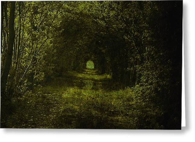 Mystic Art Greeting Cards - Dark Wood Greeting Card by Stefan Kuhn