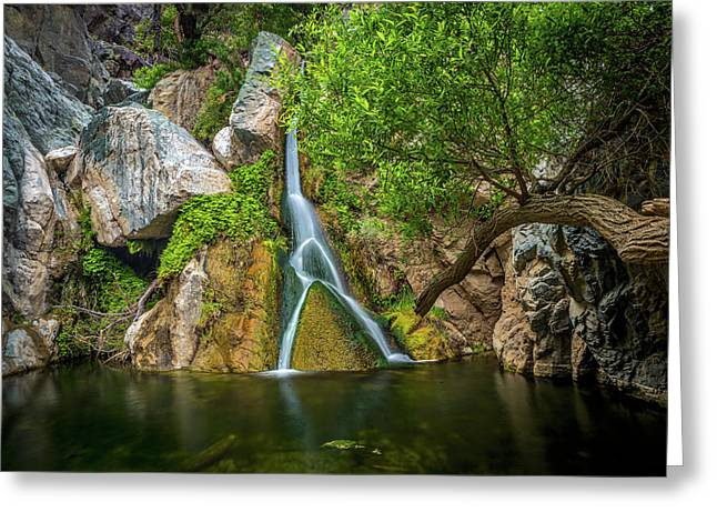 Darwin Falls Death Valley 2 Greeting Card by Peter Tellone