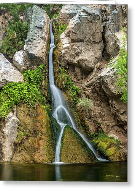Darwin Falls Death Valley Greeting Card by Peter Tellone