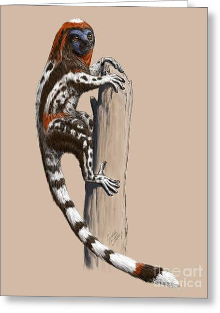 Primate Greeting Cards - Darwinius masillae Greeting Card by Julius Csotonyi