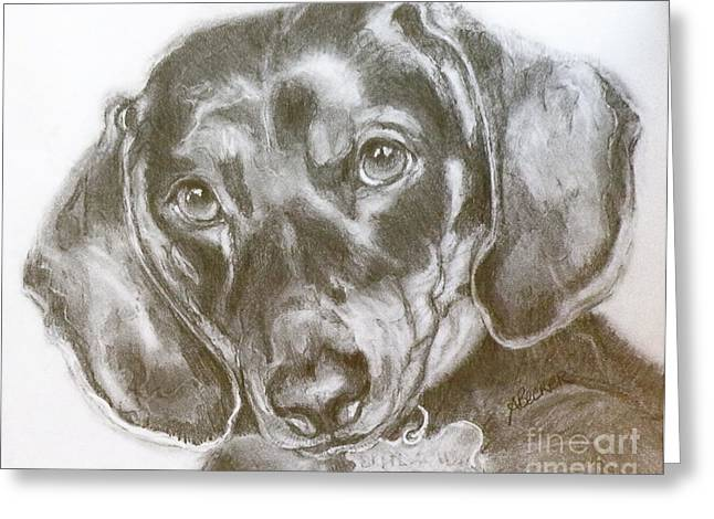 Dog Pencil Greeting Cards - Daschund Pencil Drawing Greeting Card by Susan A Becker