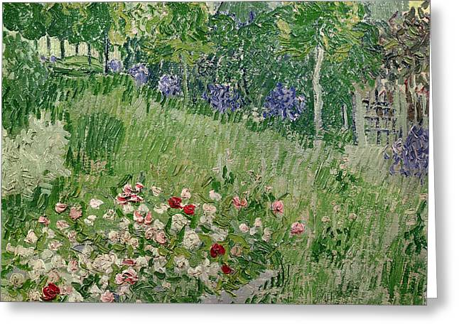 Vincent Paintings Greeting Cards - Daubignys Garden Greeting Card by Vincent Van Gogh