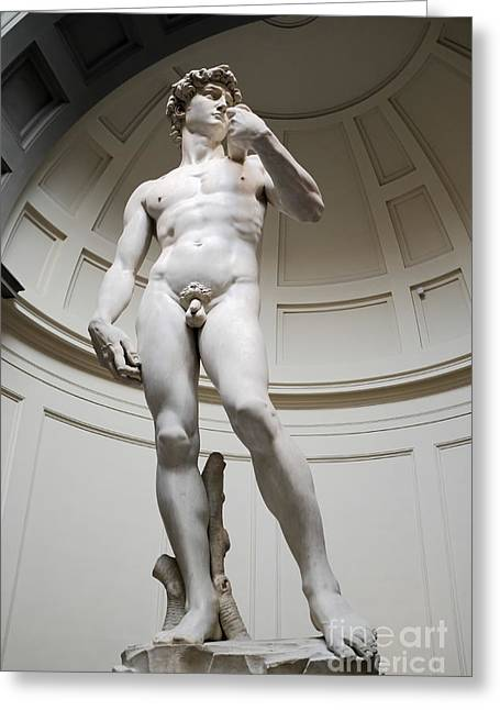 Michelangelo Greeting Cards - David by Michelangelo Greeting Card by Edward Fielding